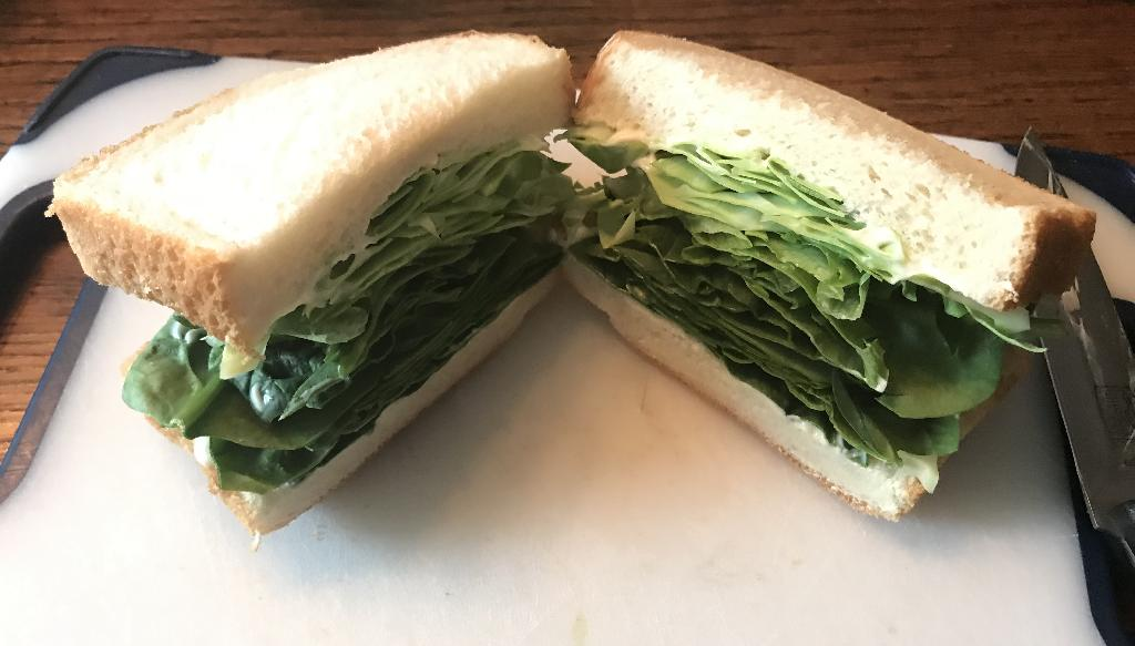 cabbage-spinach-mayo-hot-sauce-mustard-sandwich.jpg